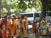 Free Food for Sadhus